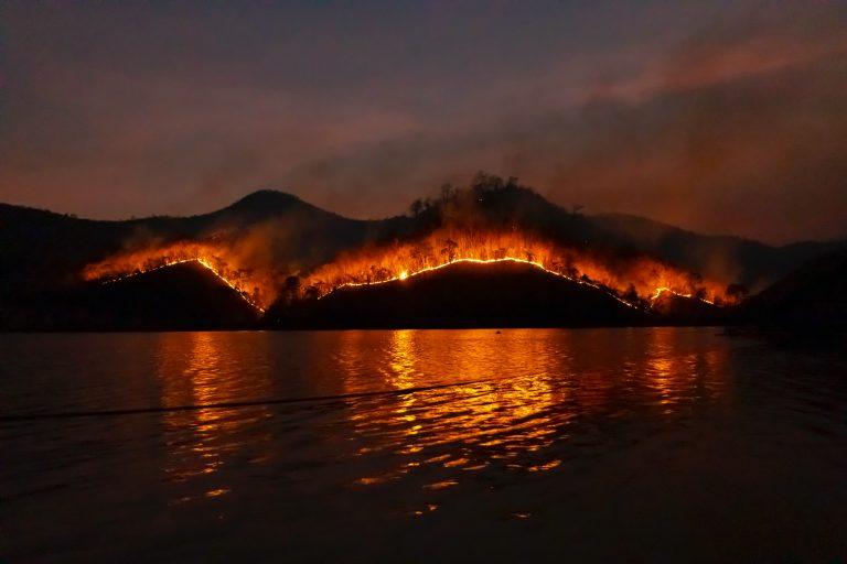 Read more about the article 2021 Orman Yangınlarının Analiz ve İncelemesi
